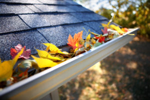The Importance of Keeping Your Gutters Clean in the Fall