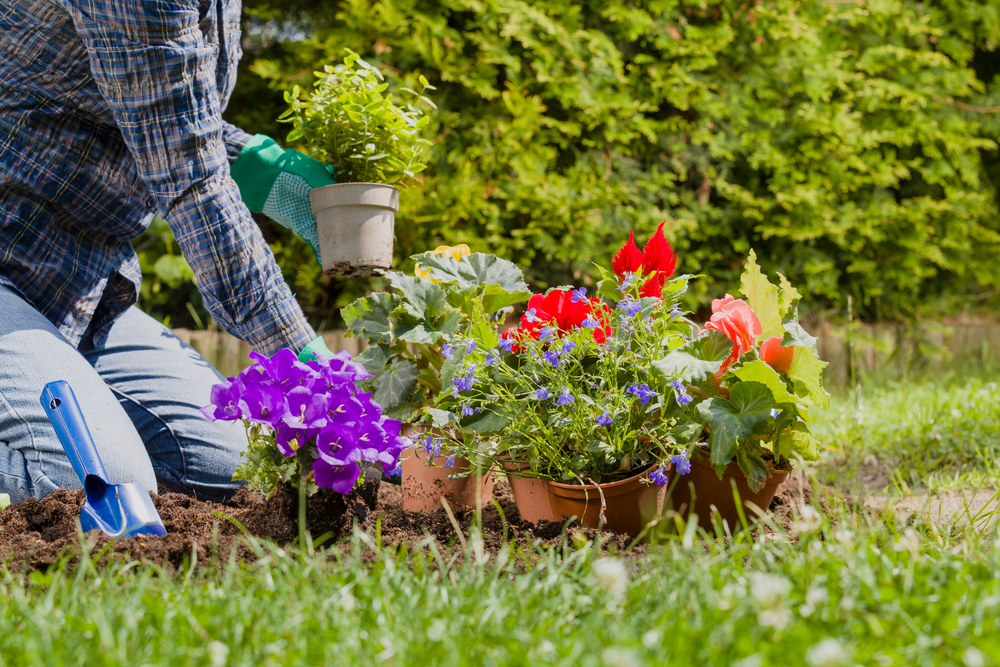 5 One-Day Outdoor Projects